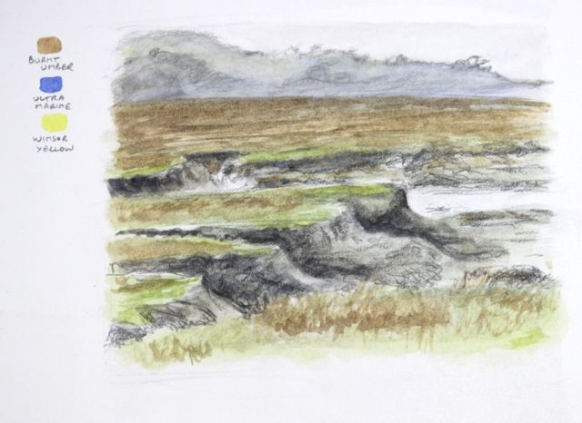 One of the sketches on my salt marsh blog