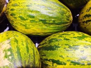 meloner