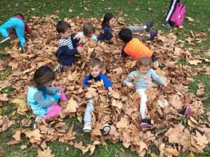 ULB_txiki-foxes-niños-jugando-hojas-arbol