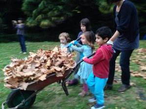 ULB_txiki-foxes-niños-recogiendo-hojas