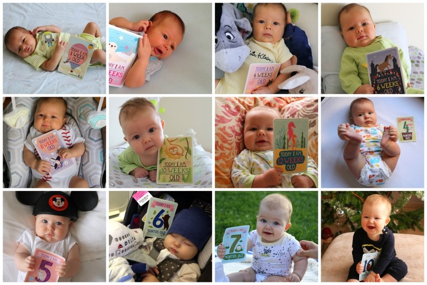 alaric's first year
