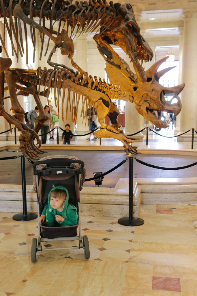 Natural-History-Museum-2799