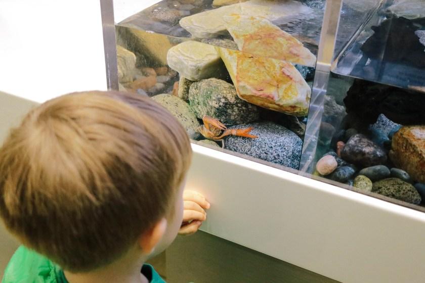 Natural-History-Museum-2858
