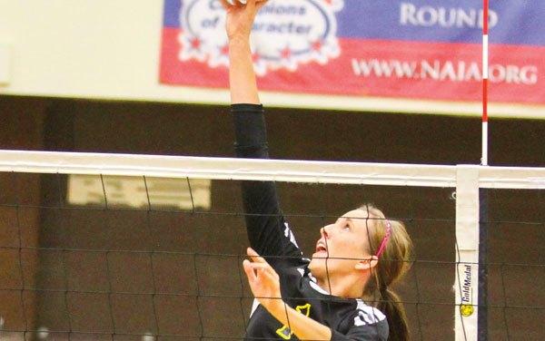 Profile: Robyn Miller