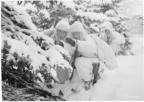 Finnish patrol