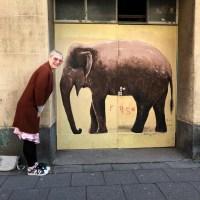 Wer wird denn gleich bei Schreibblockaden an rosa Elefanten denken?