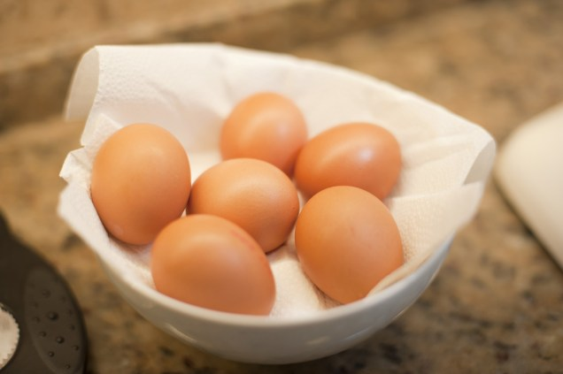 Fresh free range farm eggs