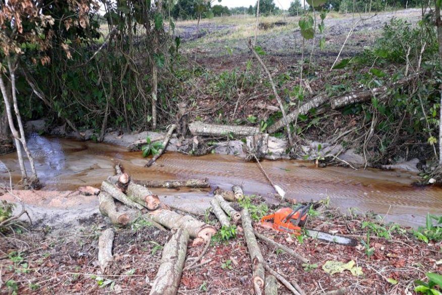 Polícia Militar prende em flagrante suspeito de cometer desmatamento em Santa Rita