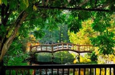 Hatley Gardens_bridges