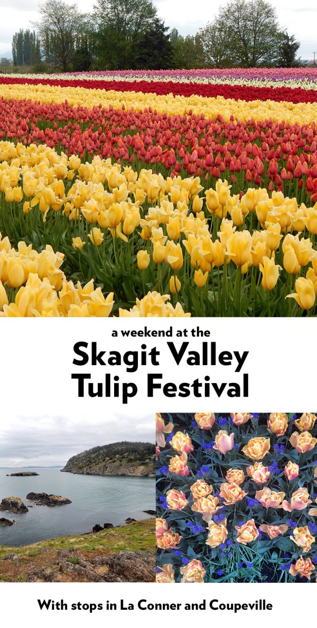 A weekend at the Skagit Valley Tulip Festival, with stops in La Conner, Coupeville and Deception Pass State Park
