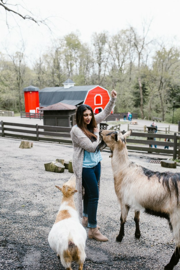 A Zoo Bachelorette Party | Ultimate Bridesmaid | CTG Photography