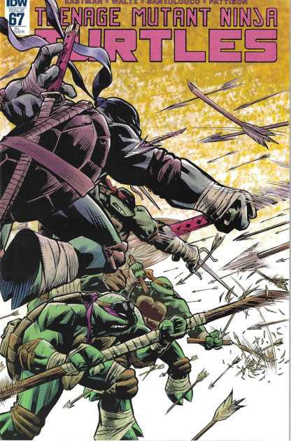 TMNT Ongoing #67 1:10 Karl Moline Variant IDW