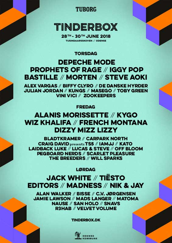 Tinderbox Festival 2018 Day by Day Line up poster