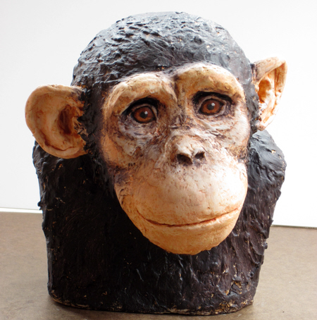 Painting the Chimp, Step 5