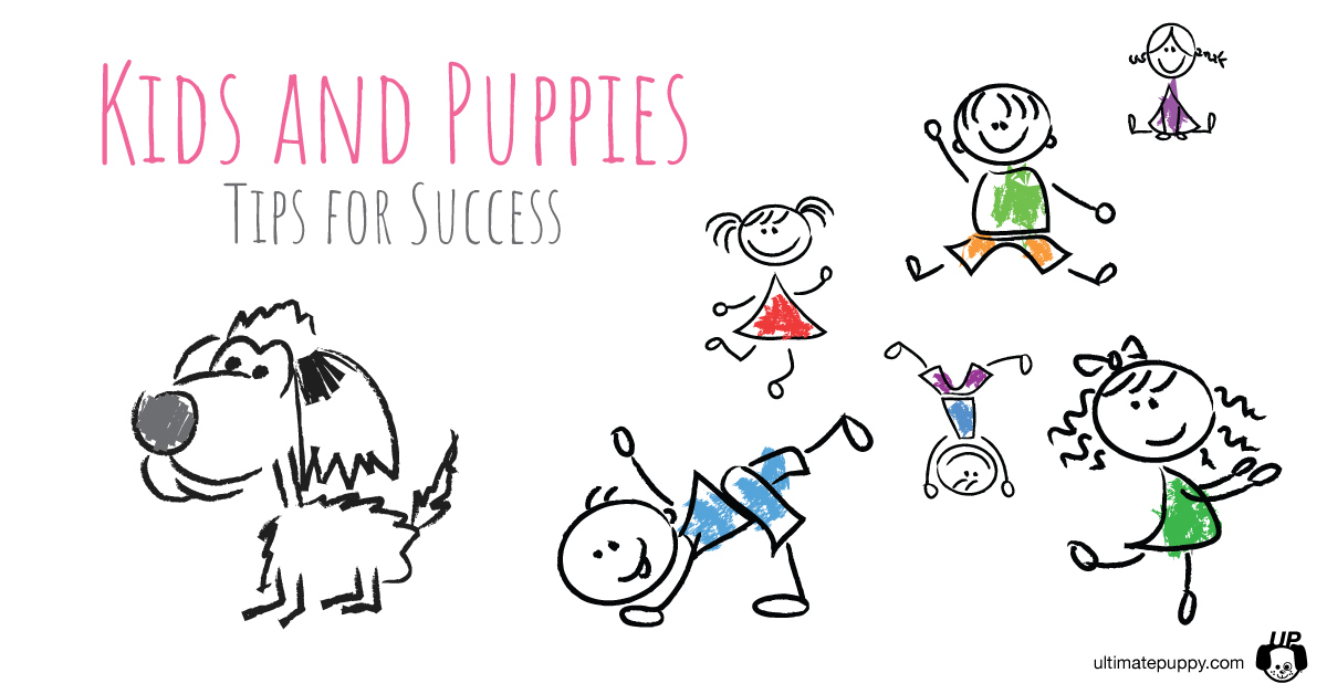 Kids and Puppies - Tips for Success