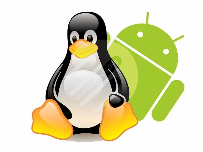 How to Run any Android App in Linux?