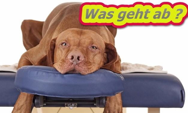 GZSZ als erste tägliche RTL-Serie ab 16. September hochauflösend