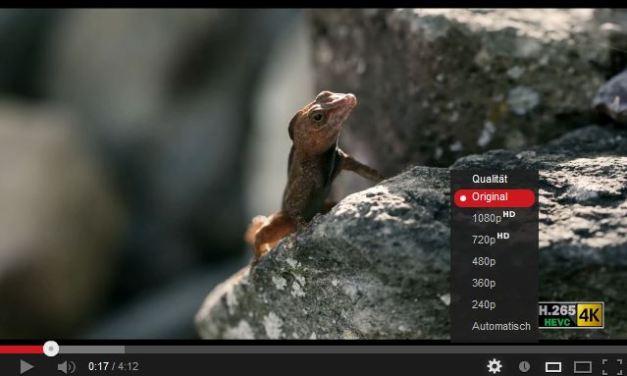 Die Ultra HD Videos der Woche – U.S. Virgin Islands, 3D-Transform-Animation und Zeitraffer-Aufnahmen