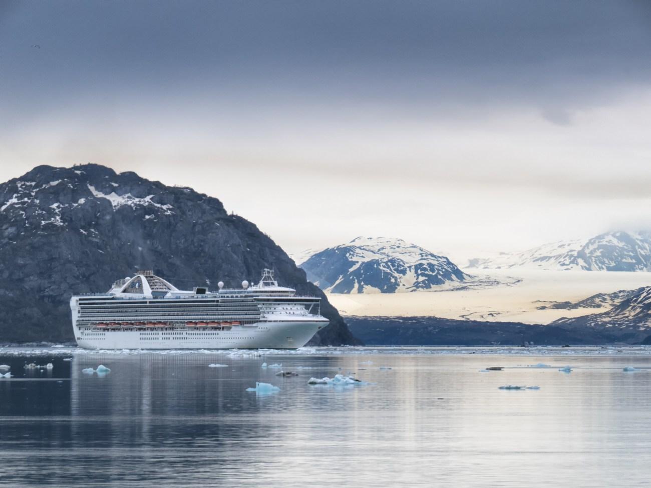 Glacier Bay June3-46