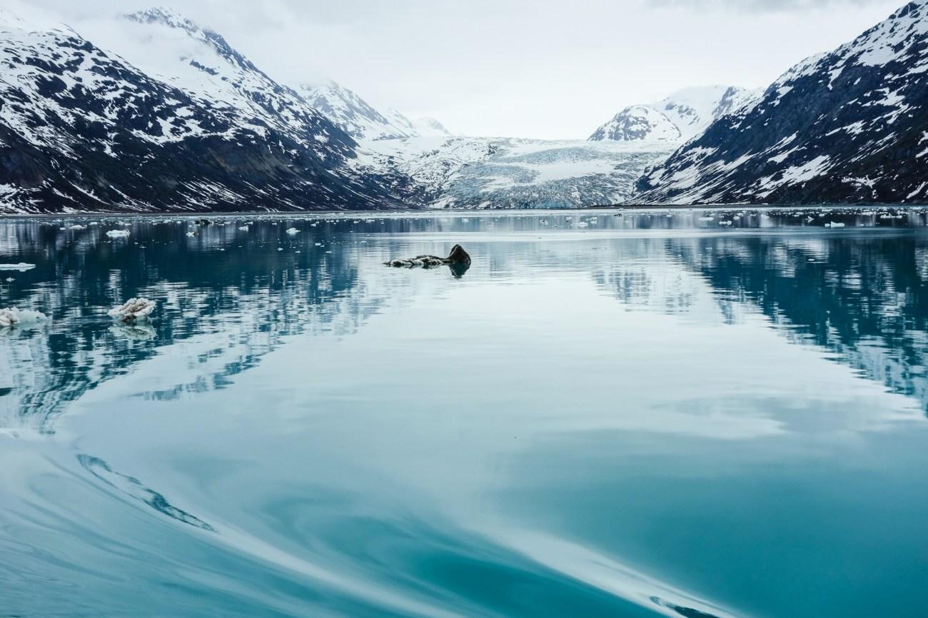 Glacier Bay June3-67