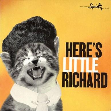 Here's Kittle Richard