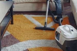 Professional Rug Cleaning 1