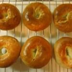 茹でて作る不思議なパンたち~ベーグルやプレッツェルの生地を茹でる理由は?~