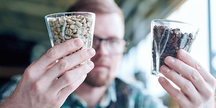 Profissional avalia torra de café
