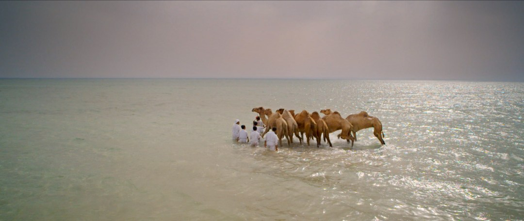 Filming company in Qatar