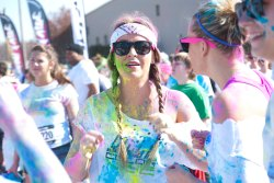 Color Vibe 378