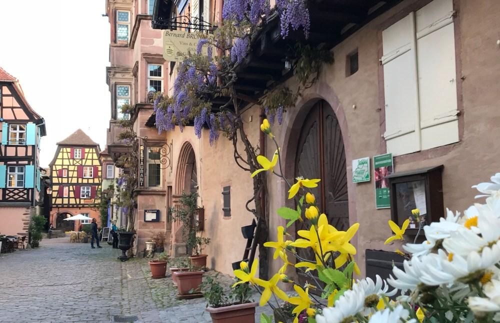A delicadeza das flores, casas e detalhes de Riquewihr