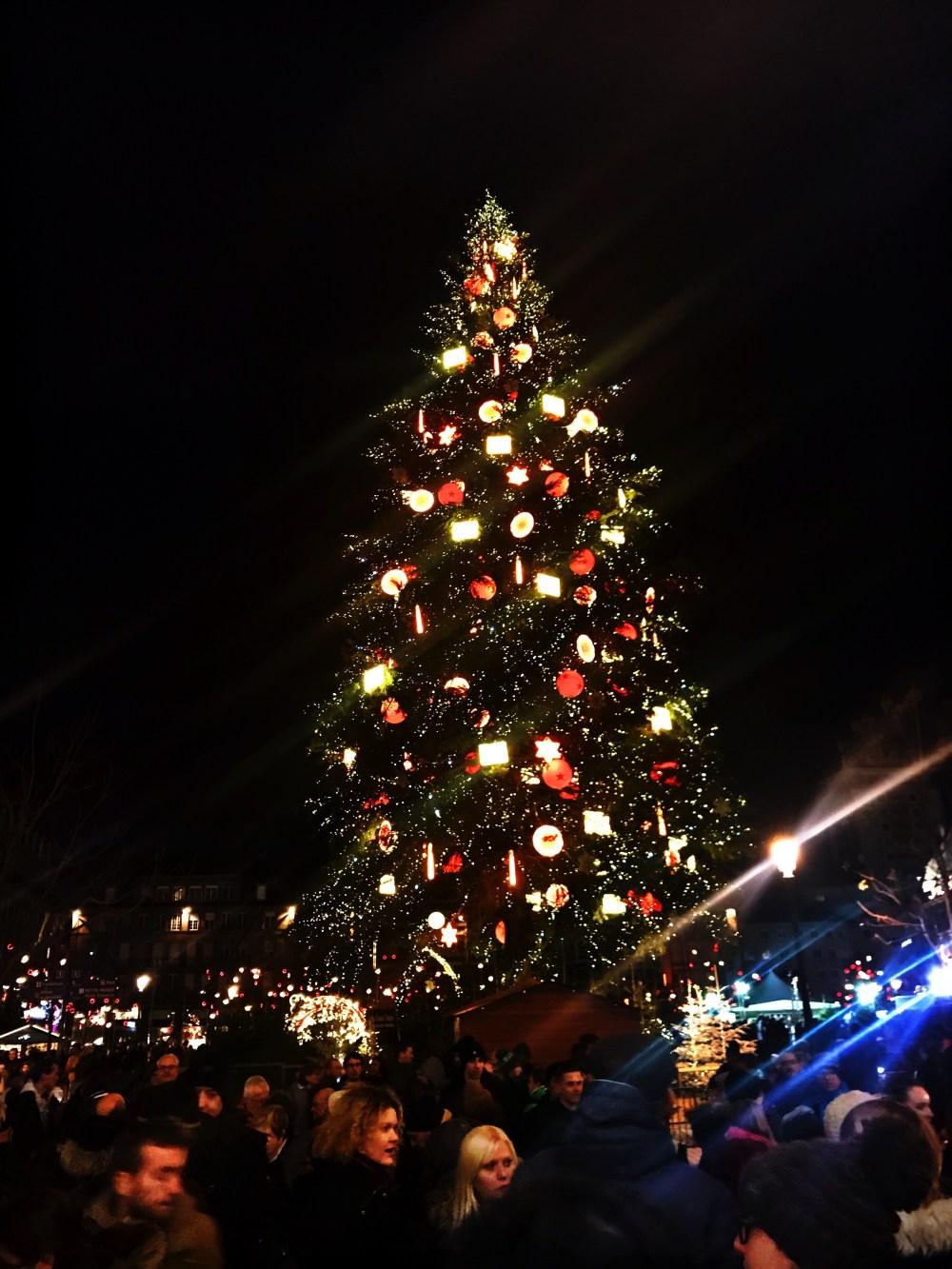 A grande árvore de Strasbourg