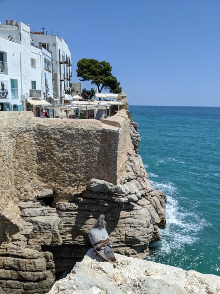 Confira tudo o que ver nessa linda cidade do mediterrâneo espanhol!