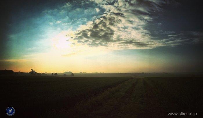 Summer runs at dawn