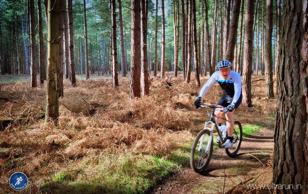 Mountain Biking in Thetford Forest