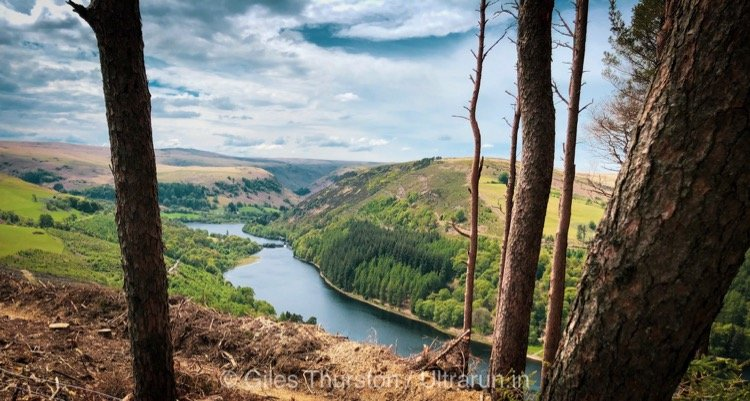 Dragons Back 2019 / Day Four: Climbing Above Caban-coch Reservoir