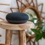 google-home-mini-chromecast-uv
