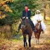 牧場の広大な敷地の中、お客様を馬に乗せて案内するお仕事です