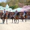 未経験者歓迎! 大自然と充実した設備の中で競走馬の調教にチャレンジしてみませんか?