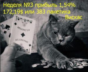 отчет по памм инвестированию 3