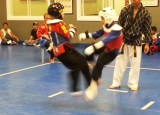 United Martial Arts classes