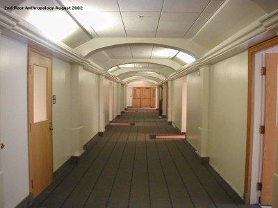 200208 - 2nd floor Anthropology