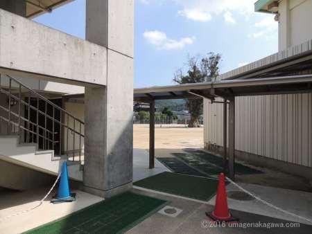 牟礼小学校のユーカリ_校門からの景色