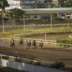 サマーCh・JPNⅢ レース結果と勝ち馬プロフィール