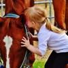 2019サンデーTC募集馬・評価情報④ No.166~184