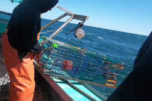 Deploying the camera for barotrauma research