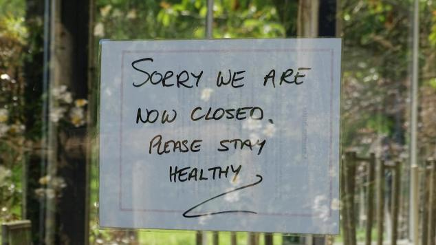"""Hand written sign with """"Sorry we are closed, please stay healthy"""" and green foliage reflected in glass window"""