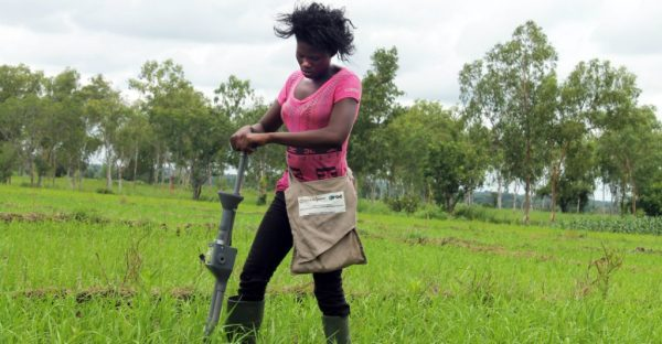 helping farmers help themselves ciats contribution to - HD2998×1672