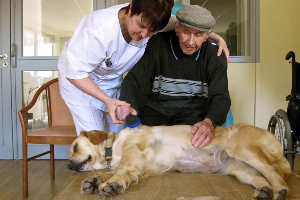 aide soignante en maison de retraite formée à la médiation animale