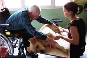 La formation de praticien spécialisé à la médiation par l'animal aide les personnes âgées